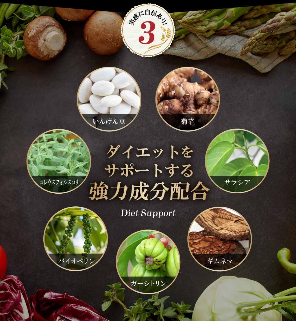 ポイント3 ダイエットをサポートする強力成分配合「菊芋」「サラシア」「ギムネマ」「ガーシトリン」「バイオペリン」「コレウスフォルスコリ」「いんげん豆」